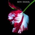 newmoon-120908