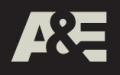 aande-013009